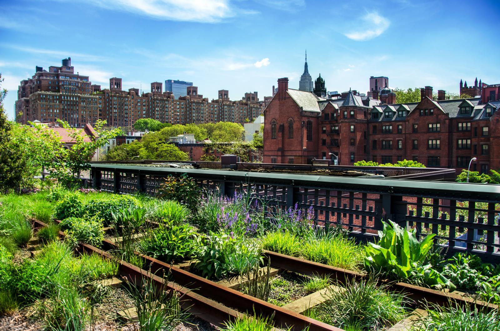 o que fazer em Nova York high Line park