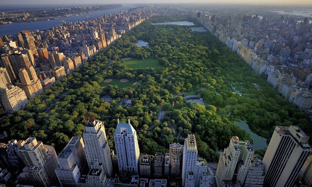 O que fazer em nova york as 10 melhores atra es de nova york for What to do in new york new york