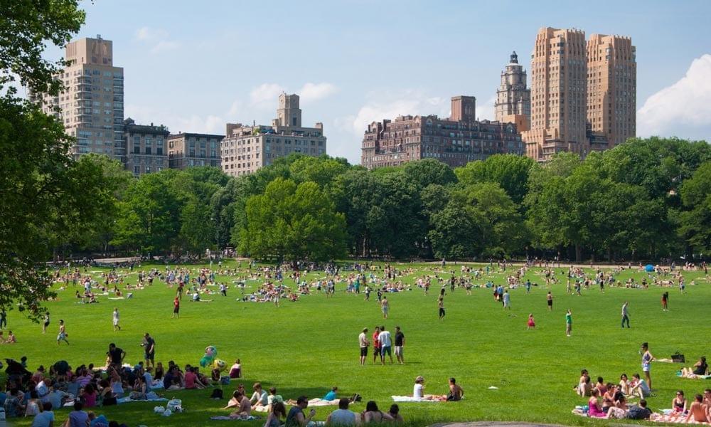Resultado de imagem para parque central park new york