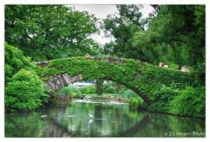 Fotos do Central Park