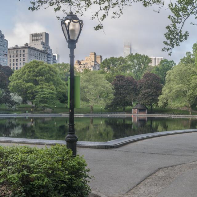 O que fazer no Central Park ?