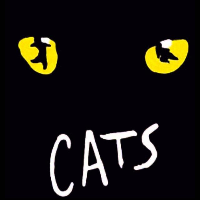 Cats: Musical da Broadway