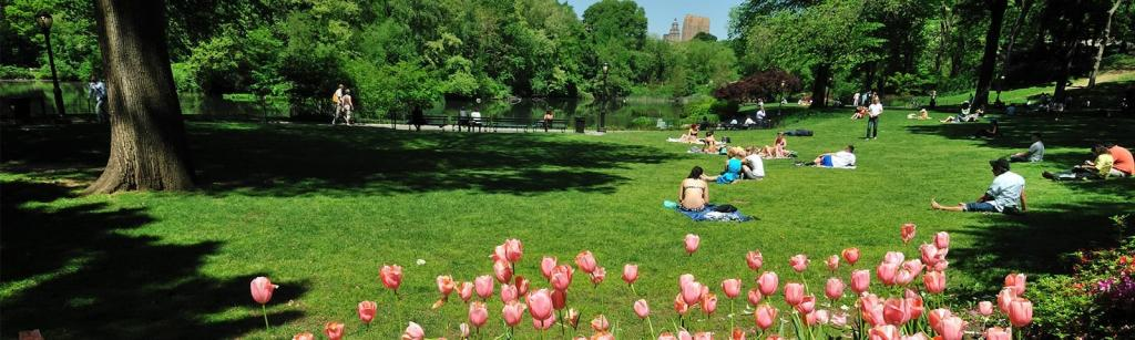 Roteiro Nova York 7 dias no verão